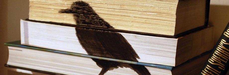 שום דבר מלבד שירה מאת: דרור בורשטיין על שירתה של מאיה בז'רנו